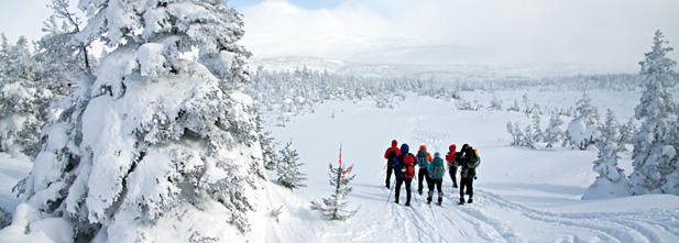 Traversée de la Gaspésie à ski de fond, crédit photo ricochetdesign.qc.ca