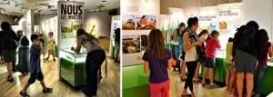 Expositions itinérantes de l'Insectarium de Montréal au Musée minéralogique de Thetford Mines