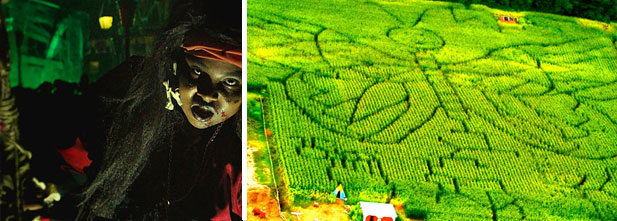 Gauche: Festival de la frayeur à La Ronde. Droite: Labyrinthe de l'horreur du Verger Labonté